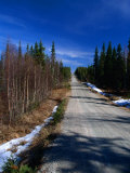 Road Through Forest  Lappi  Finland