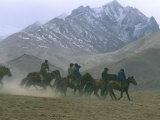 Semi-Nomadic Tajiks of the Pamir Mountains Herding Sheep with Horses  Near Kashgar  Kashgar  China