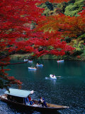 Boats with Tourists Showing Arashiyama's Autumn Colours  Kyoto  Japan