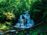Wagner Falls and Surrounding Vegetation  Munising  USA