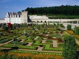 Chateau De Villandry Vegetable Garden  Villandry  France