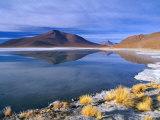 Landscape Reflected in Saline Lake in Arid  High Altitude Terrain  Bolivia