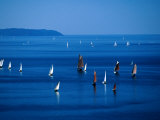Sailing Boats in Bay  Brest  France