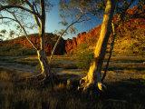 Glen Helen Gorge  West Macdonnell National Park  Australia
