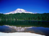 Mt Rainier from Reflection Lake  Mt Rainier National Park  USA