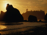 Ruby Beach at Sunset  Olympic National Park  USA