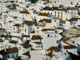 Whitewashed Village Houses of Casares  Clinging to Steep Hillsides  Malaga  Andalucia  Spain