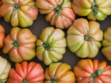 Tomatoes  Positano  Amalfi Coast  Campania  Italy