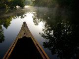 Canoeing Alexander Springs Creek  Ocala National Forest  Florida