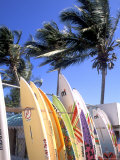 Surfboards  Grand Cul De Sac  St Bart&#39;s