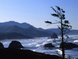 Cannon Beach from Ecola State Park  Oregon  USA