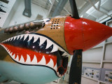 WW2 Era P-40 Tiger Shark Fighter Plane  Palm Springs Air Museum  Palm Springs  California  USA