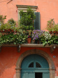 Balcony Garden in Historic Town Center  Verona  Italy