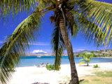 Qualie Beach  Nevis  Caribbean