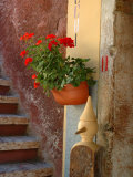 Private Staircase with Flowerpot  Malcesine  Italy