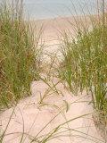 Smyrna Dunes Park  New Smyrna Beach  Florida