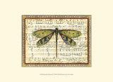 Dragonfly Harmony II