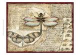 Poetic Dragonfly I