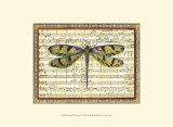 Harmonie de libellules I Reproduction d'art