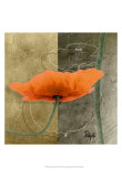 Orange Poppies VI