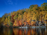 Autumn Scene in Northern Ontario  Canada
