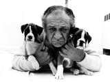 Sid James and His Boxers Dogs Bula and Beaut