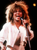 Tina Turner in Concert Birmingham