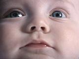 Infant's Face