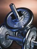 Steel Dumbbells for Workout