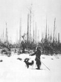 Kulik Stands Near a Section of Upright Charred Trees Southern Swamp Tunguska