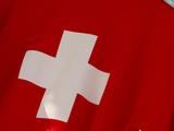 Swiss Cross on Fabric
