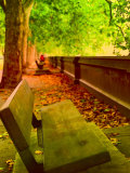 Park Bench in Autumn with Falling Leaves