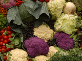 A Colorful Pile of Freshly Harvested Vegetables