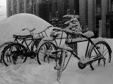 Bicyles at a University Near Sapporo  Hokkaido