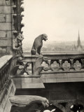 Detail of One of the Two Terraces with Monstrous Figures  Cathedral of Notre-Dame  Paris
