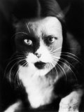 Me and Cat&#39;  Two Superimposed Photos of Wanda Wulz and of Her Cat