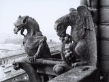 Detail of Two Monstrous Figures Located on a Terrace in the Cathedral of Notre-Dame  Paris