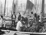 Fishermen Overhaul the Nets on Their Boats at Scarborough Yorkshire