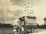 WWI: Soldiers Setting Free Some Carrier Pigeons  Northern France