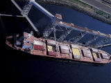 Freighter Being Loaded with Wheat  Elliott Bay Grain Terminal  Seattle  Washington  USA