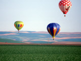 Colorful Hot Air Balloons Float over a Wheat Field in Walla Walla  Washington  USA