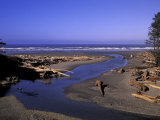 Kalaloch Beach and Creek  Olympic National Park  Washington  USA