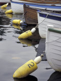 Mooring Buoys at the Center for Wooden Boats  Seattle  Washington  USA