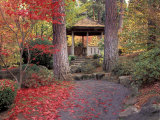 Japanese Gazebo with Fall Colors  Spokane  Washington  USA