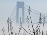 Verrazano-Narrows Bridge in Morning Fog  Staten Island  New York  USA