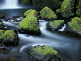 Water Below Wahclella Falls  Columbia River Gorge National Scenic Area  Oregon  USA