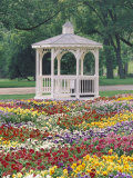 Patchwork of Pansies and Gazebo  Columbus  Ohio  USA