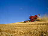 Combines Harvesting Crop  Palouse  Washington  USA
