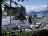Ruby Beach  Olympic National Park  Washington  USA