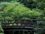 Footbridge in Japanese Garden  Portland  Oregon  USA